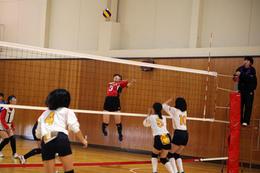 本校主催「第3回奈良文化杯 中学生バレーボール大会」が行なわれました!