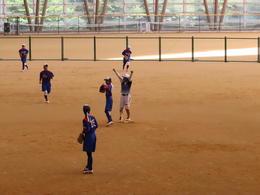 ソフトボール部が近畿大会に出場しました